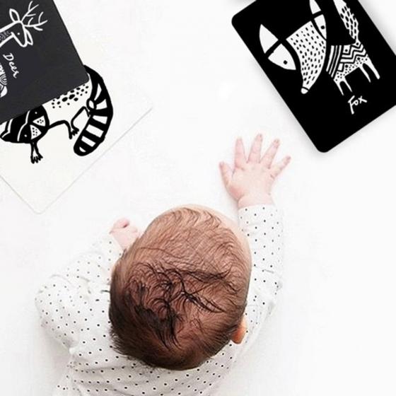 Imagier pour bébé